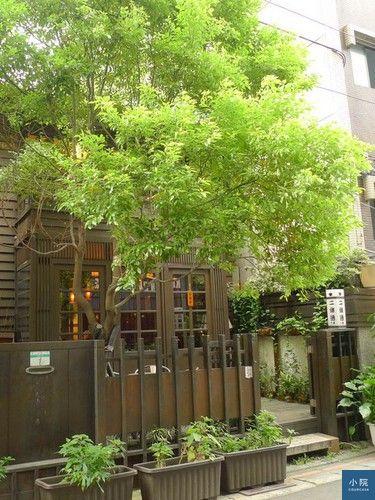二條通,老宅改造的咖啡廳,店前有棵大樹