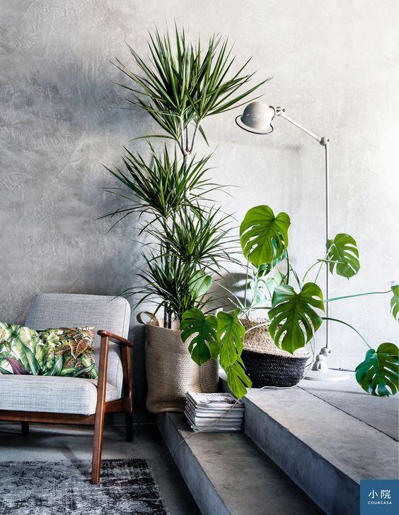 圖片來源:home and garden