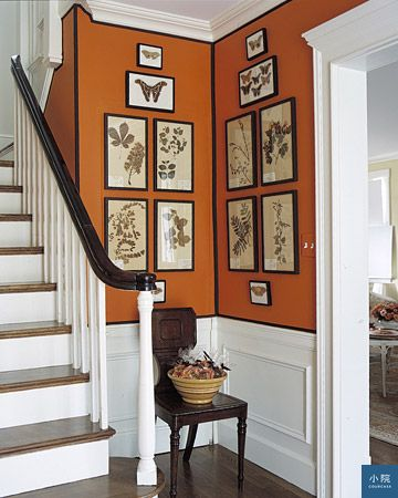 Orange-Martha-Stewart